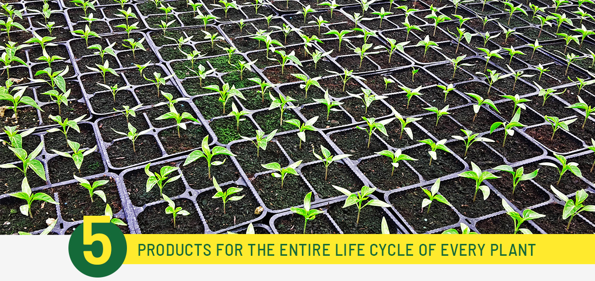 Ekopatent organska gnojiva i biostimulatori